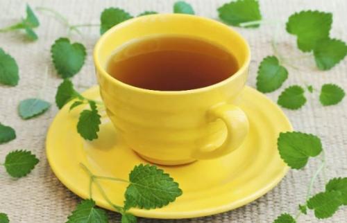 Chá de Erva cidreira: para que serve e benefícios para a saúde