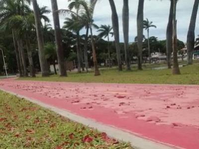 Obra da Lagoa ficar� marcada por erros, diz vereador